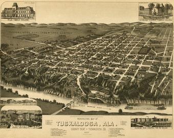 Vintage Map - Tuskaloosa  Alabama 1887