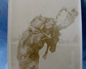Antique Postcard Rodeo Langley Leaving Serpent Doubleday 1930s