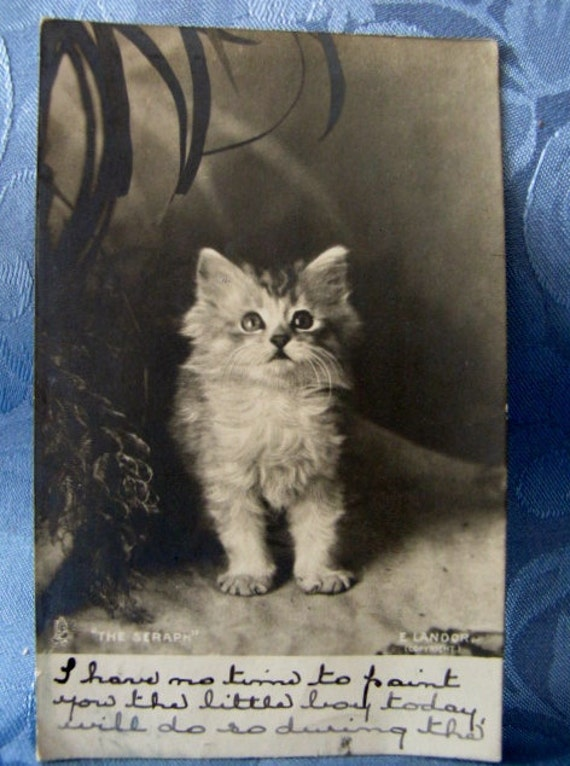 RPPC Postcard Kitten Antique 1905 England The Seraph E Landor