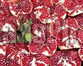 Istanbul Pomegranate 10x20 Fine Art Metallic