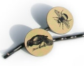 Bee and Crow illustrated bobby pins / hair clips with rustic charm for nature lovers