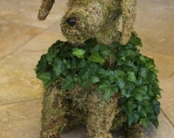 Mossed Ivy Dog