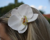 Large White Phalaenopsis Orchid Hair Clip Barrette, Graduation, Bridal Hair Flower, Wedding Hair Accessory, Bridesmaid, Bachelorette