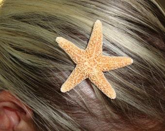 Tiny Sugar Starfish Hair Clip Barrette Perfect For A Beach Wedding by PalmBeachFlowerGirl