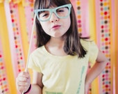 Glasses on a Stick - Set of 5 Photo Booth Props