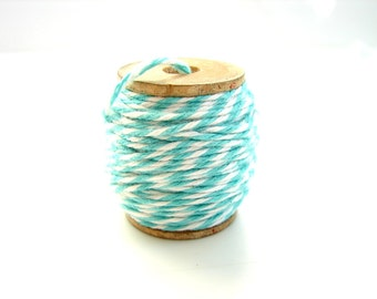 Aquamarine and White Bakers Twine (10 yards) on Vintage Spool - Gift Wrapping, Crafts, and more