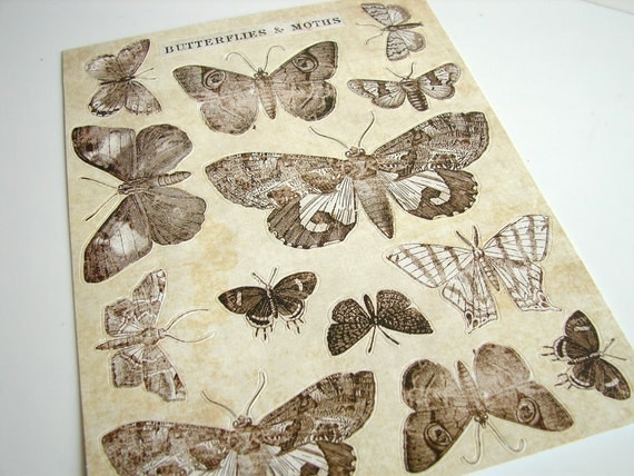 Butterflies and Moths Stickers (Set of 14) - Use for paper projects, cards, altered art, and more