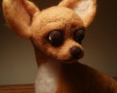Needle Felted Dog Chihuahua Dog Sculpture -Charro - OOaK Dog - Artist Sculpted