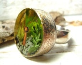 Tiny Terrarium ring no. 1
