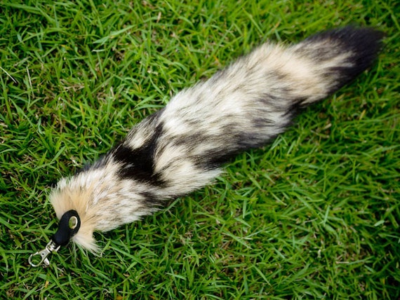 Swift / Kit Fox Tail Keychain with Leather Attachment