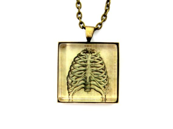 "Vintage Medical ""Grody Anatomy"" Pendant -- ""Ribs"" in Vintage Bronze --With FREE Chain and Gift Tin"