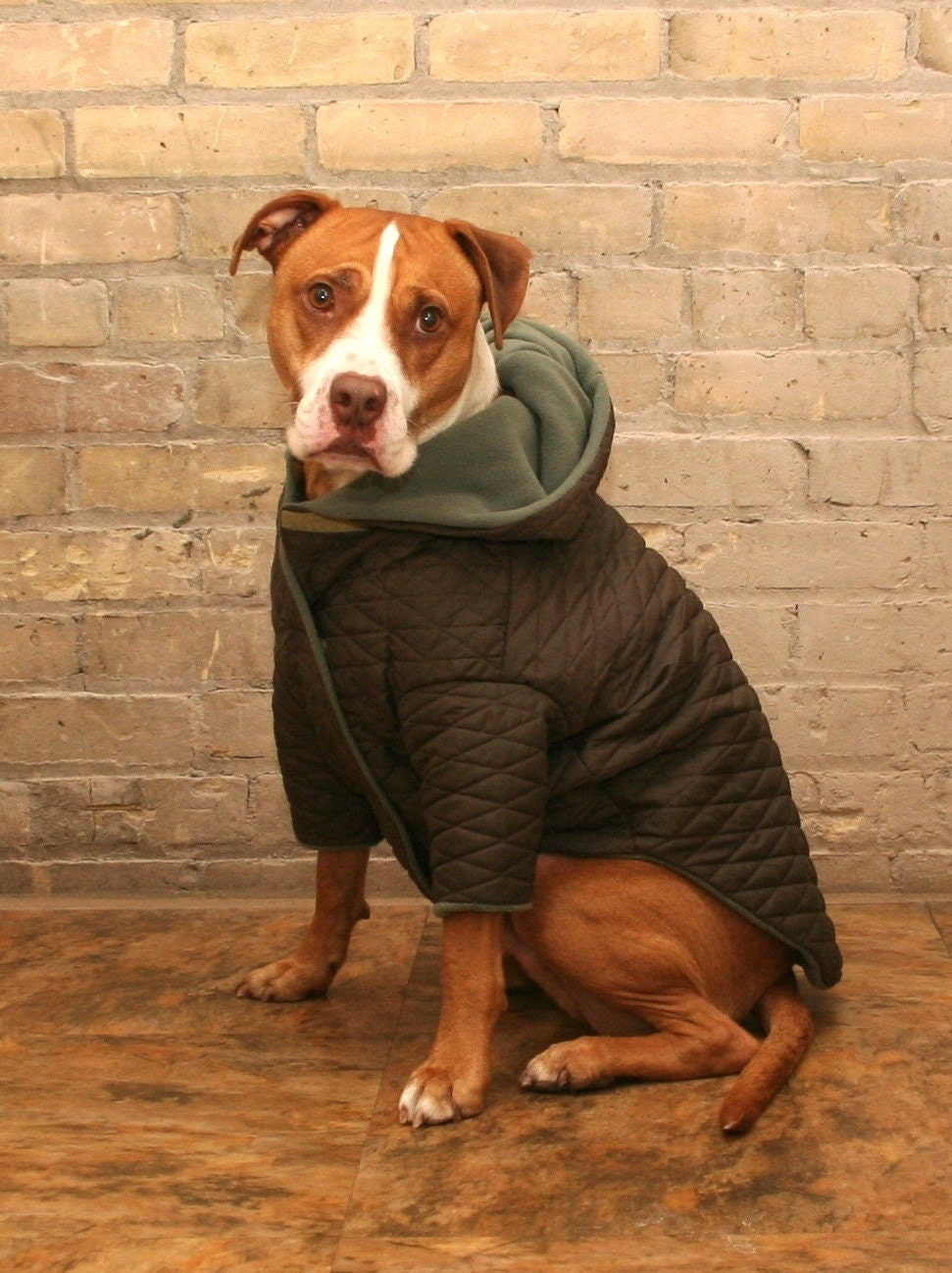 Fleece Lined Puffy Dog Jackets For Big Dogs Or Custom