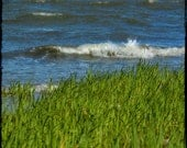 Beach Photography Rolling Wave Sea Grass 5 x 7 Print