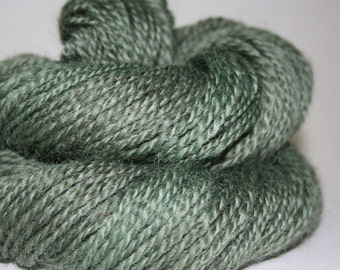 Handspun, Romney Wool, DK Worsted Weight Yarn, 10 WPI, 152 yards, 2 ply, OOAK International Shipping Ready to Ship - Morning Lichen