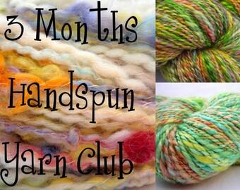 Handspun Yarn Club, 3 Months Membership