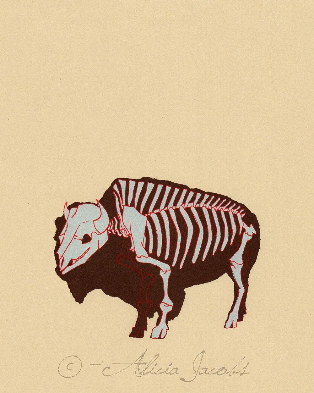 Buffalo Skeleton Diagram Screenprint
