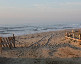Assateague Island In The Morning