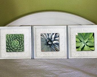 Shabby Chic Trio - Square Framed Prints