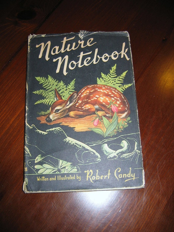 Rare Childrens Nature Book Titled Nature's Notebook by Robert Candy - 1953