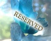 RESERVED Custom Listing - Custom Faerie