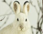 Snowshoe Hare Sculpture - Needle Felted Wildlife Sculpture, Woodland Animal, Winter Rabbit