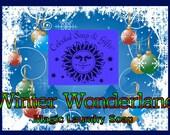 Winter Wonderland LIMITED Edition Natural VEGAN Laundry Soap Powder  6 oz. 5-10 Loads SAMPLE