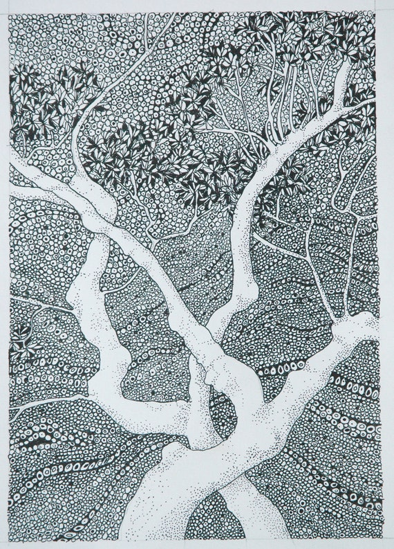 Tree Print 'Entwined' From My Golden Age Series of Drawings
