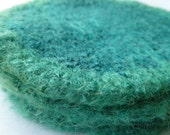 Eco Friendly Dreams Felted Coaster Set