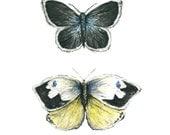 butterflies watercolor giclee print // BLUE & YELLOW BUTTERFLIES // 8 x 10 inches - art print