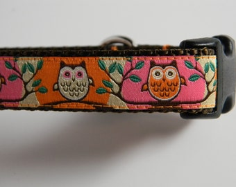 "Owl Dog Collar- Cute Hoot 3/4"" Wide Pink & Orange"