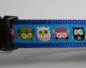 """Owl Dog Collar- Fat Little Owls 1"""" wide Blue"""