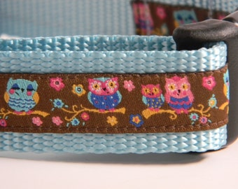 "Owl Dog Collar- Springtime Owls 1"" Wide"
