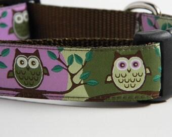 Dog Collar- Owls- Cute Hoot