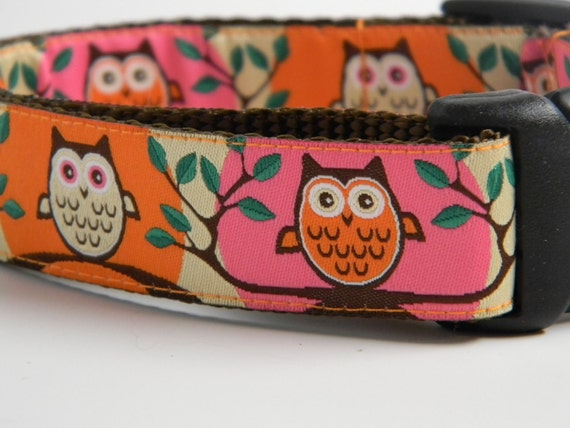 "Owl Dog Collar- Cute Hoot 1"" Wide Pink & Orange"