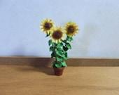 "1/4"" scale Kit : Sunflower Kit"