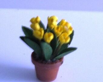 "1/4"" Yellow Tulips Kit"