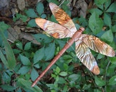 carved cedar wood and copper dragonfly