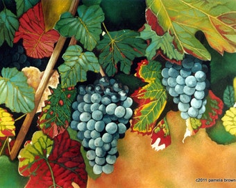 Chinon Grapes Limited Edition Art Print French Vineyard Still Life Lithograph by Pamela Brown
