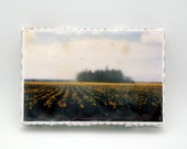 Washington Fields Encaustic Photograph - No Trespassing 4 x 6 x 1