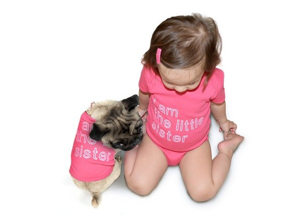 Big Little Sister/Brother - Baby Onesie and Dog T