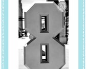 4x6 Number 08 & 8 Individual Alphabet Photography Print