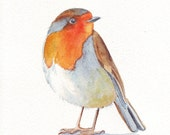 Robin Painting  -  bird print of watercolor painting - 5 by 7 print