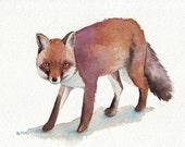 Fox Painting ORIGINAL animal WATERCOLOR painting