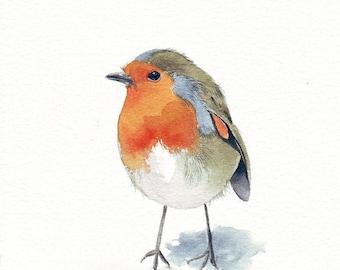 Robin Painting bird - R042- Print of watercolor painting - 5 by 7 print wall art print - bird art print