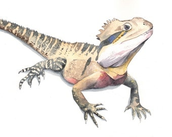 Lizard painting - print of watercolor painting 5 by 7 print