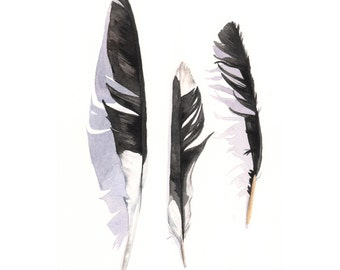 Magpie Feather painting - F020- print of watercolor painting -5 by 7 print, bird art, wall art, home decor