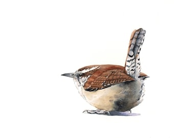 Wren Painting - W001- bird wildlife art nature brown-  print of watercolor painting -5 by 7 print, bird art, wall art, home decor