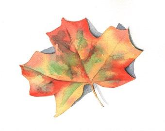 Autumn Leaf Painting - Maple leaf - L017-  ORIGINAL watercolor painting