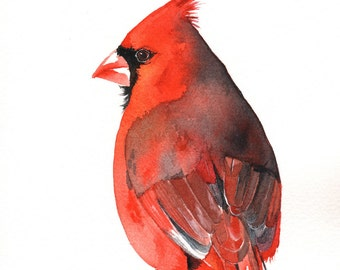 Cardinal Watercolor Painting - Print of watercolor painting. - A4 size print, bird art, wall art, home decor - Christmas decor C2011