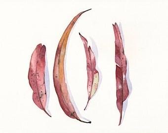 Eucalyptus Leaves Painting -E022- ORIGINAL watercolor painting